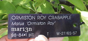 Ormiston Roy Crabapple accession tag
